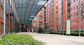 Cours de composition de l'image en photographie à Lyon